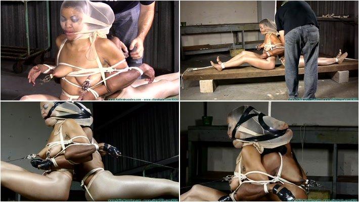 Mass effect kelly chambers porn
