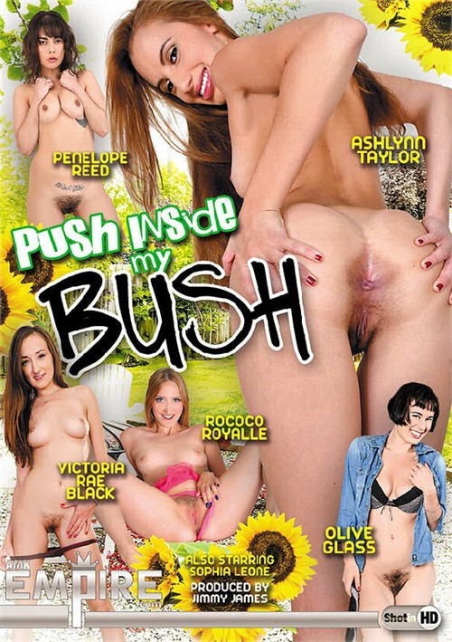 Push Inside My Bush XXX DVDRip x264-PBU