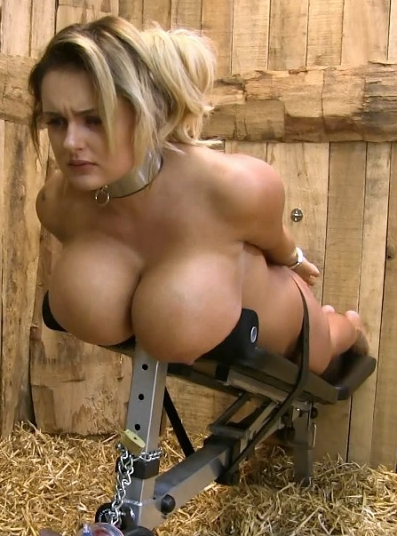 Katie Milking Bench