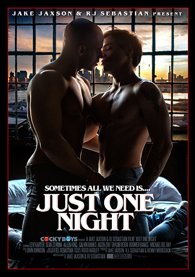 Just One Night (2018)