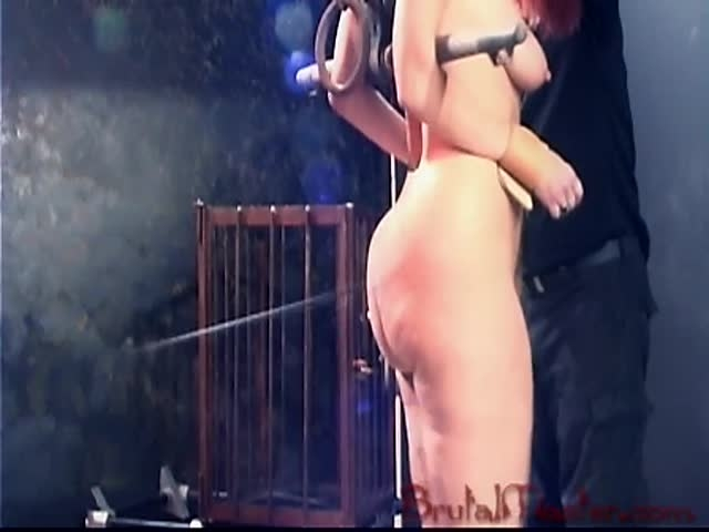 20081127_rubee_trussed_up_ (image 1)-3,