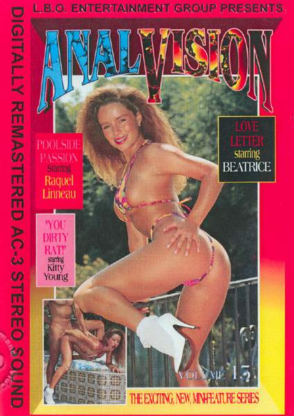 Anal Vision 15 (1994/DVDRip)