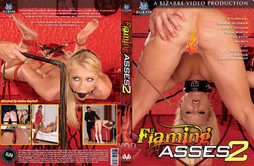 Flaming%20Asses%202_m.jpg