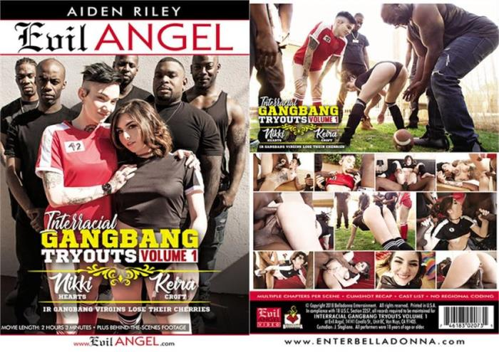 Interracial Gangbang Tryouts Volume 1 [DVDRip 406p 1.27 Gb]