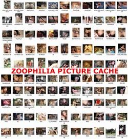 Cash s - ZOOPHILIA PICTURE CACHE