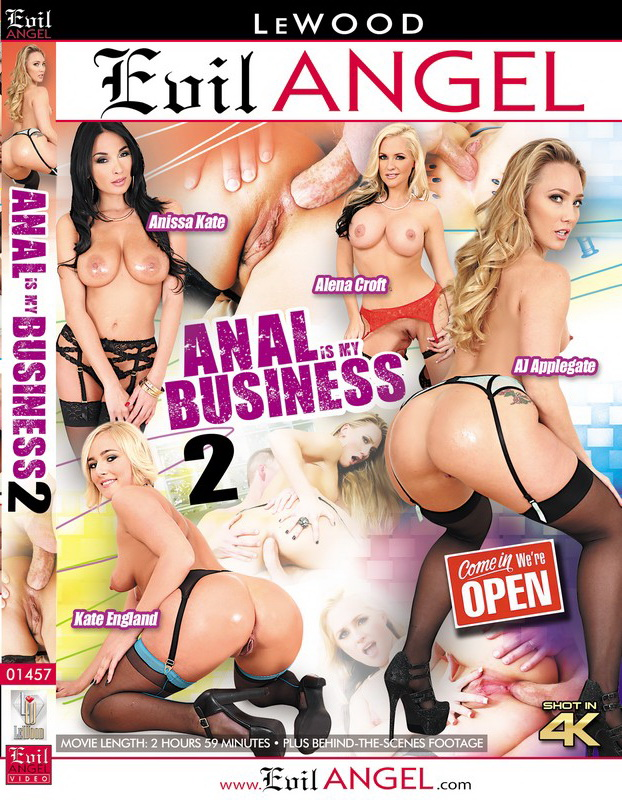 Anal Is My Business 2 (2018/SD/540p/2.95 GB)