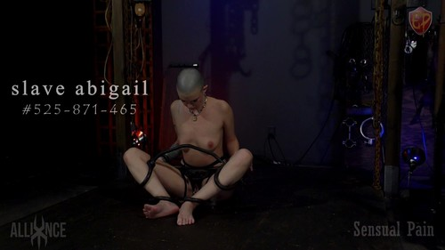 Trapped - Abigail Dupree