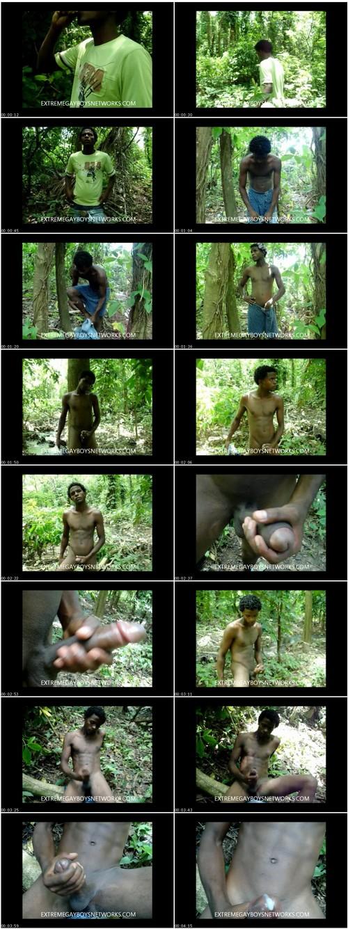 http://ist5-1.filesor.com/pimpandhost.com/9/6/8/3/96838/6/5/A/U/65AUy/Extreme-gayboys-w102_thumb_m.jpg