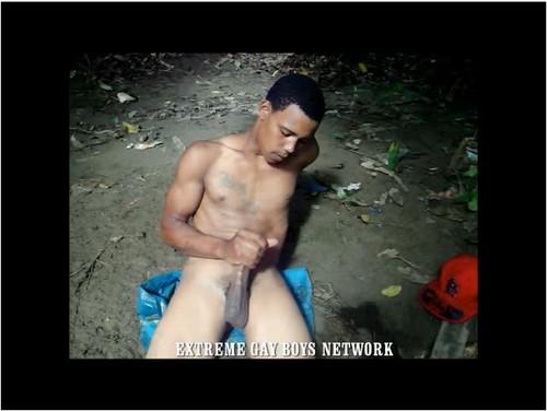 http://ist5-1.filesor.com/pimpandhost.com/9/6/8/3/96838/6/5/D/W/65DWq/Extreme-gayboys-w232_cover_m.jpg