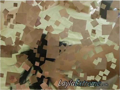 http://ist5-1.filesor.com/pimpandhost.com/9/6/8/3/96838/6/9/9/D/699DF/Laylaextreme-w274_cover_m.jpg