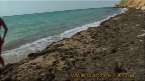 http://ist5-1.filesor.com/pimpandhost.com/9/6/8/3/96838/6/k/o/7/6ko77/Coccozella218_cover_m.jpg