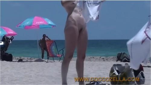 http://ist5-1.filesor.com/pimpandhost.com/9/6/8/3/96838/6/o/o/I/6ooIz/Coccozella047_cover_m.jpg