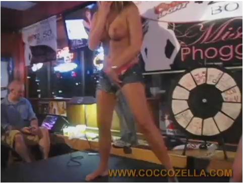 Coccozella205_cover.jpg