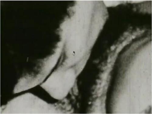 http://ist5-1.filesor.com/pimpandhost.com/9/6/8/3/96838/6/p/8/e/6p8e7/VintageCuties-h082_cover_m.jpg
