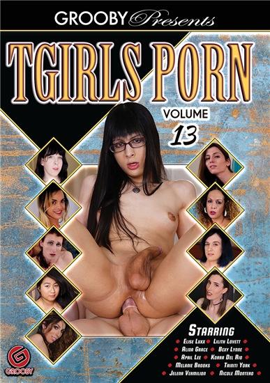 T-Girls Porn 13 (2018)