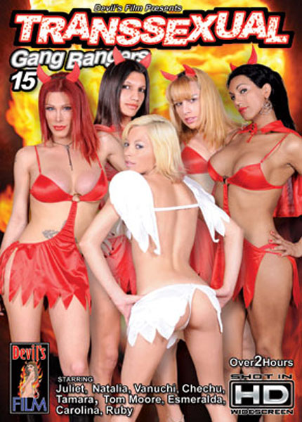 Transsexual Gang Bangers 15 (2009)