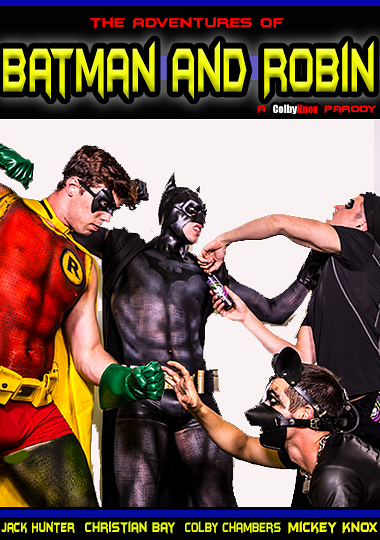 The Adventures Of Batman And Robin (2017)