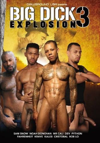 Big Dick Explosion 3 (2018)