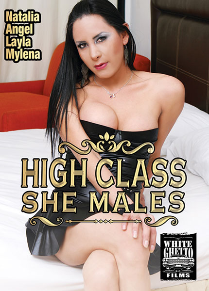 High Class She Males (2018)