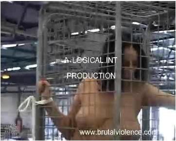 BrutalViolence-P084_cover.jpg