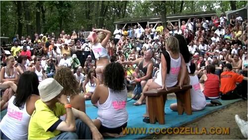Coccozella-z119_cover_m.jpg